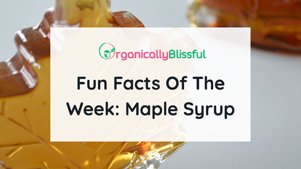 fun facts of the week maple syrup