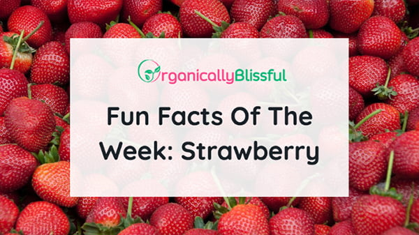 Fun facts of the week: strawberry