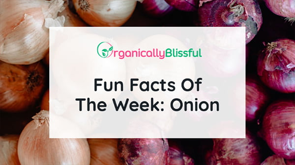 fun facts of the week onion