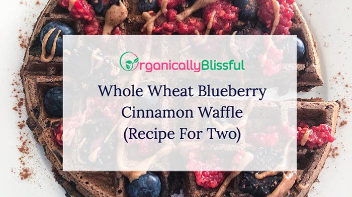 whole wheat blueberry waffle